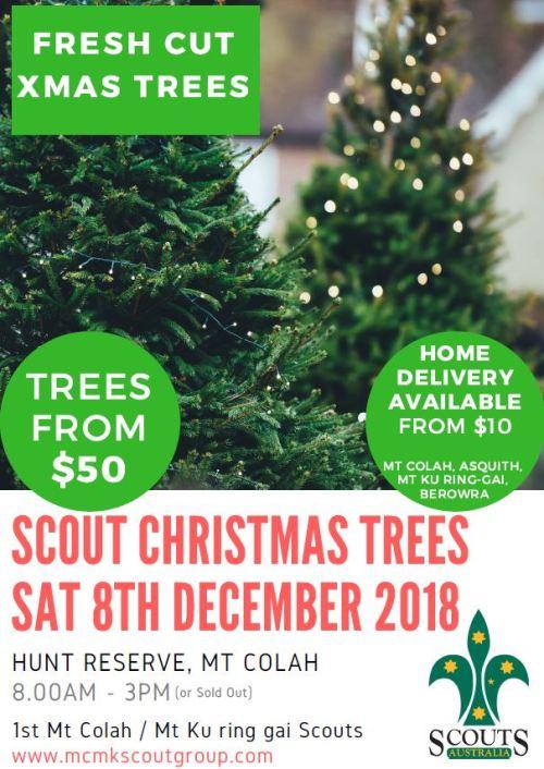 Xmas Tree Flyer 2018